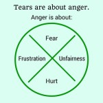Behavior, not anger, needs management