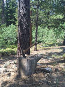 Ax on log 2